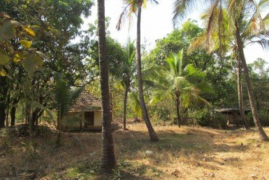 land for sale in ratnagiri